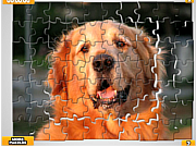 Pet Puzzles: Dogs